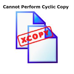 Cannot Perform Cyclic Copy